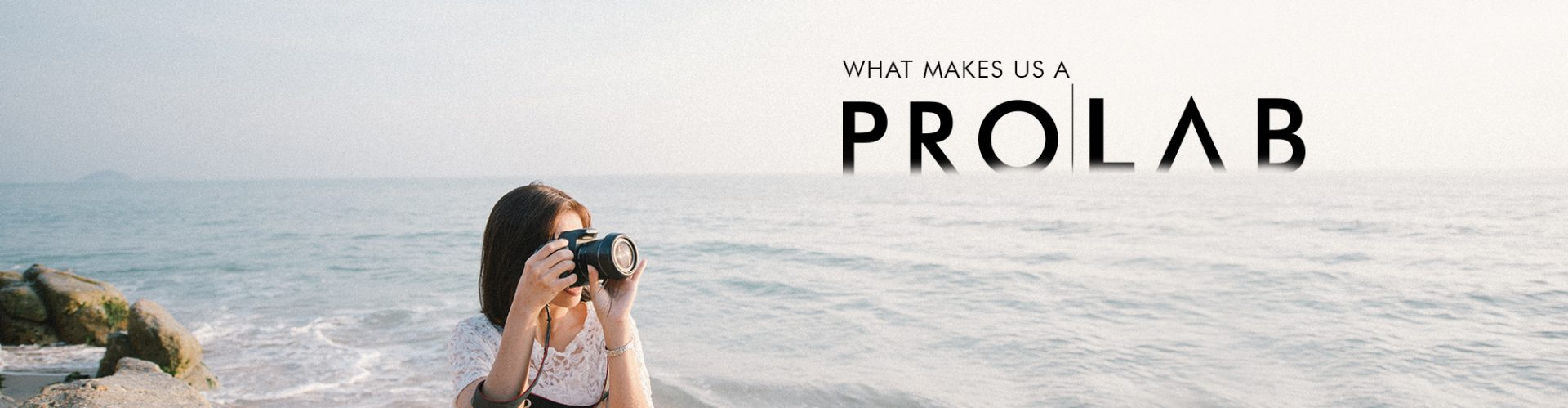 what makes us a prolab banner